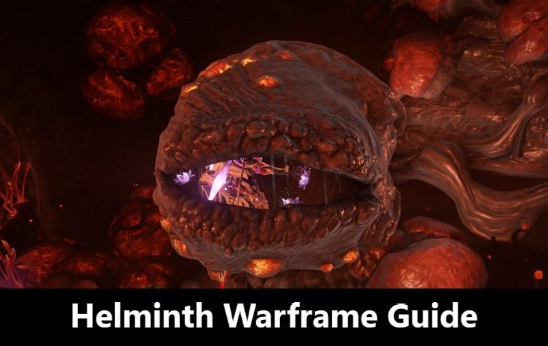 How to Use the Warframe Helminth